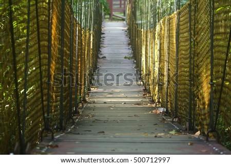 Wooden Rope Suspension Bridge #500712997
