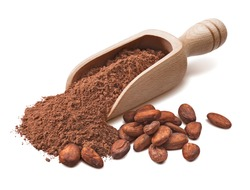 Wooden scoop with crude cocoa powder and raw beans isoladed on white background. Package design element with clipping path