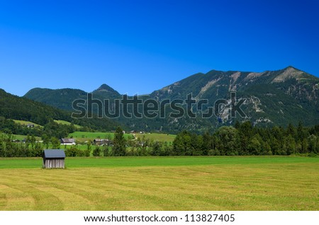 Wooden shed on green meadow with mountains in the background, Austria