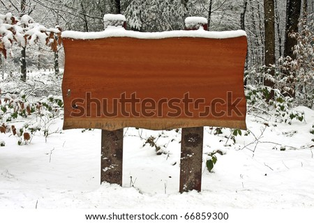 Wooden sign in the woods in winter