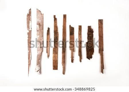 wooden splinter Stock photo ©
