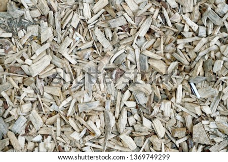 Wooden splinters closeup. Decorative wood chips texture. Natural material pattern of yellow wooden pieces of tree bark. Full filled frame picture. Top View.