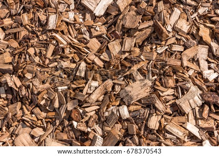 Wooden splinters closeup. Decorative wood chips texture. Natural material pattern of yellow wooden pieces of tree bark. Full filled frame picture. View from above. Sunny day with shadows.