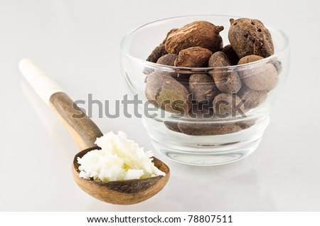 wooden spoon of shea butter and shea nuts. Shea nuts come from Africa and are used for cosmetics product and skin care