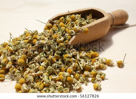 Wooden spoon with dried chamomile flowers