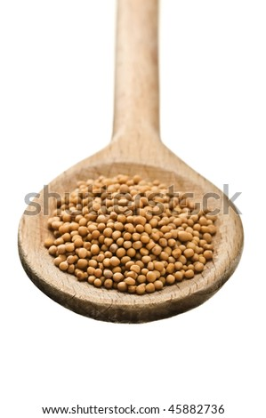 wooden spoon with mustard seeds isolated on white background