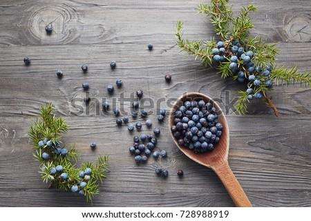 Wooden spoon with seeds of juniper. Juniper branch with berries.  #728988919