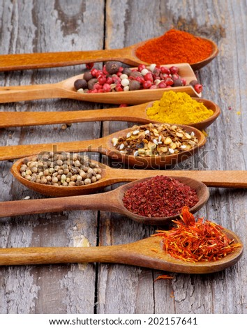 Wooden Spoons with Saffron, Sumac, Coriander, Dried Chili, Curry Powder, Paprika and Mixed Pepper In a Row on Rustic Wooden background
