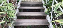 Wooden stair going up with iron handrail and ornamental plants.