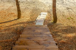 Wooden staircase in the forest between the trees.