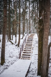 Wooden staircase in the forest, covered with snow. Slippery stairs. Forest Park in Zelenograd. Cozy winter in nature. Fluffy snowdrifts. White hills. Frosty walk. New Year's forest.