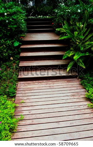 wooden stairs in the garden.
