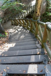 wooden stairs in the woodland