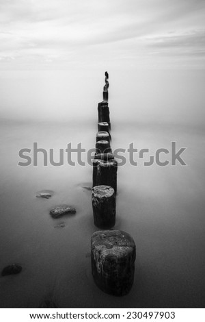 Wooden stakes on sandy beach in north Poland. Baltic Sea.Black and white with grain added/Moody Baltic Sea