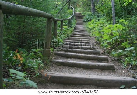 wooden steps - stock photo