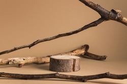 Wooden stump podium on beige background and dried branches around. Jewellery, food or cosmetic product mockup.