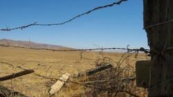 Wooden support posts and barbed wire along a ranch fence in the Carrizo Plain National Monument.