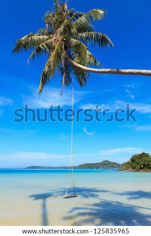 Wooden swing hanging on the trunk of a coconut tree on a sandy beach. Beautiful sea tropical landscape. - stock photo