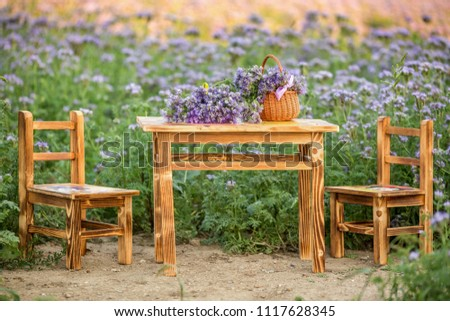 Wooden table and chairs in the Phacelia flowers field . Violet blooming nature agriculture fields. ( Phacelia tanacetifolia ) #1117628345