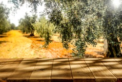 Wooden table background of free space for your decoration.Blurred summer landscape of olive grove and old trees.Sunny day and copy space for your composition.