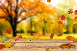 wooden table in front of a colorful autumn landscape, beautiful autumn background concept with fall leaves and advertising space