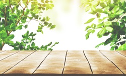 Wooden table top with Green leaves as frame on white background