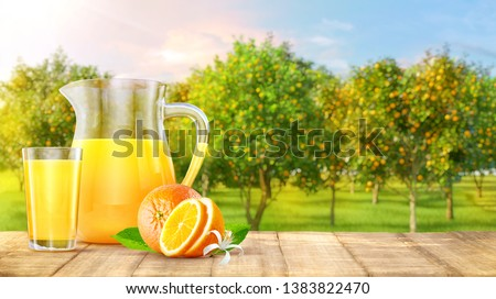 Wooden table top with orange juice jug, glass of juice, orange fruits, orange garden trees with fruits in sun light. Oranges, orange juice, smoothie, product advertising key visual design elements. 3D