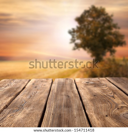 wooden table tree and sunset