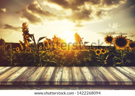 Wooden table with sunflower fields backgrounds #1422268094