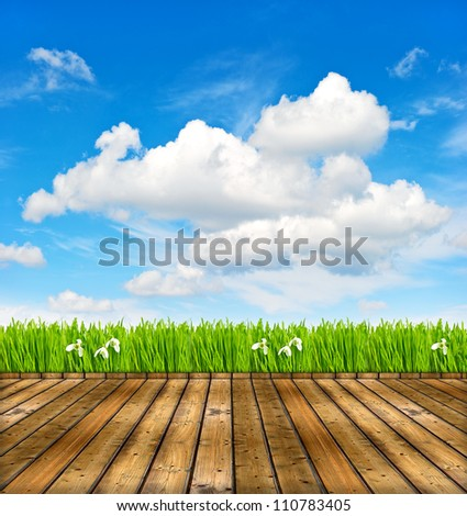 wooden terrace with view of cloudy blue sky and green grass