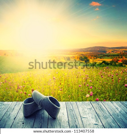 wooden terrace with view with blue sky and green grass and the sunshine