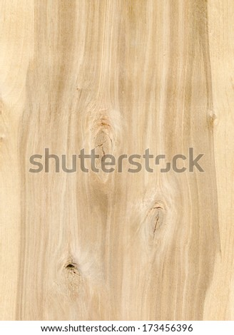 Wooden texture. Color photo of a rough wooden surface.