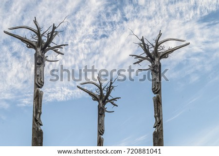 wooden totem with faces and roots resembling hairs #720881041