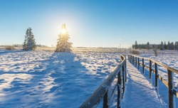 wooden trail in to a winter landscape at sunrise