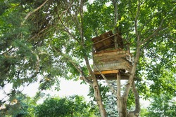 Wooden tree house for kids on the garden. Old abandoned tree house for children