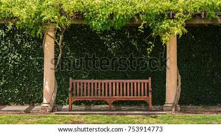 wooden vintage bench with green ...