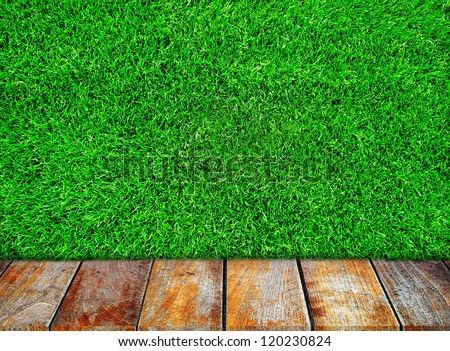 Wooden walkway and green meadow