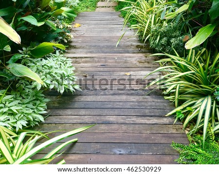 wooden walkway in garden with...