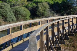 Wooden walkway in the park. Coastal Botanical Garden of Porto Caleri, Rosolina Mare, Italy.