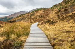 Wooden Walkway on a Rainy Day