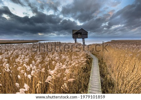 Wooden walkway through salt tidal marsh leading to observatory hide in Natura 2000 area Dollard, Groningen Province, the Netherlands. Landscape scene in windy conditions in the nature of Europe. Foto d'archivio ©