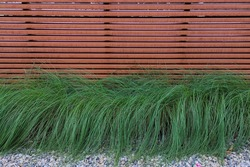 Wooden wall with green bush grass decorate on pebble rock pattern floor