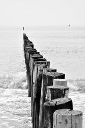wooden wave breakers aligned on beach in Zeeland, Netherlands