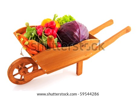 Wooden wheelbarrow with a diversity of fresh vegetables