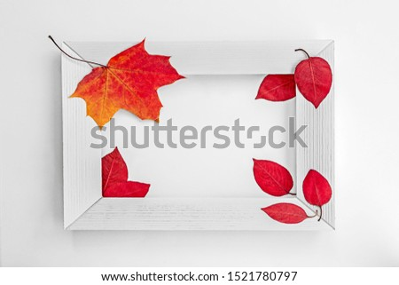 wooden white frame, autumn bright foxes around, place for an inscription, autumn picture