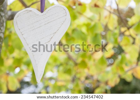 Wooden white heart hanging in a tree #234547402