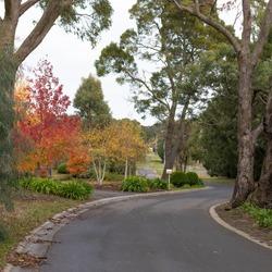 Woodend macedon ranges Victoria autumn colour