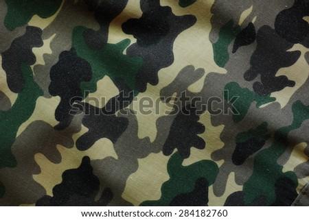 Woodland Camouflage Texture (Valid)