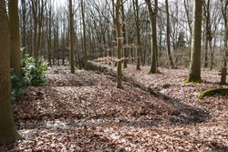 woodland plot with constructed rebates, intersected by waterways