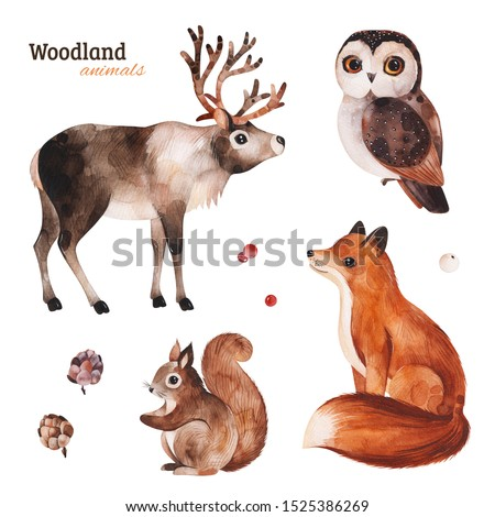 Woodland set with cute reindeer,fox,owl and squirrel.Cartoon winter animals.Perfect for your project,print,scrapbook,baby shower,Birthday card,invitations,greeting card,christmas and much more.